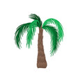 cartoon icon of palm tree with large green leaves vector image vector image