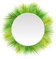 circle blank sign with tropical background vector image vector image