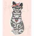Cute hipster rockabilly cat with head scarf glasse vector image vector image
