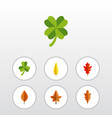 flat icon foliage set of leafage linden leaf and vector image vector image