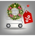 Shopping cart and christmas wreath vector image vector image