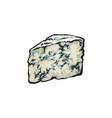 wedge of roquefort gorgonzola blue cheese vector image