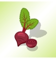 Beet beetroot icon Vegetables with leaves vector image