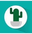 Cactus decoration design vector image