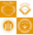 grain ears concept logo design collection vector image