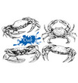hand drawn crabs vector image vector image