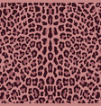 leopard seamless pattern vector image