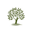 logo tree ecology nature icon or symbol vector image