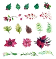 Set of watercolor flowers and berries vector image vector image