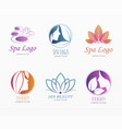 wellness and beauty banner set vector image vector image