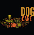 you must use good dog care text background word vector image vector image