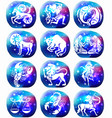zodiac signs on space galaxy background vector image