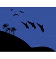 wildlife dolphin gull vector image