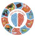 Brain Foods infographics vector image vector image