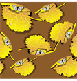 leaves and butterfly vector image vector image