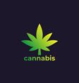 marijuana leaf cannabis logo vector image