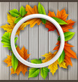 round frame autumn leaves wood background vector image
