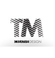 tm t m lines letter design with creative elegant vector image