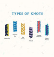 different types colourful string tie knots vector image