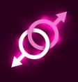 gay symbol vector image vector image