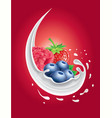milk splash with forest fruit strawberry vector image vector image