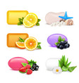 soap aroma bars set vector image vector image