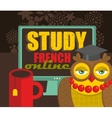 Study French advertisement vector image vector image