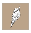 white spiral conch sea shell isolated sketch vector image vector image