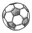 cartoon image of football ball icon soccer ball vector image