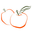 apple drawing on white background vector image vector image