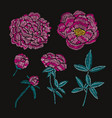 decorative peonies set vector image