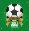 soccer sport poster with balloon vector image vector image