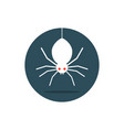 white spider hanging in circle vector image