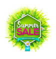 summer sale label vector image vector image