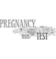 what to expect from a home pregnancy test text vector image vector image