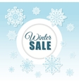 Winter snow or snowflake vector image