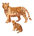 bengal cats isolated on white big tiger and vector image