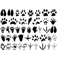 animal track print silhouettes vector image vector image