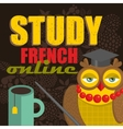 Clever owl promoting online education vector image