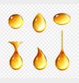 realistic oil drops shine yellow droplets set vector image vector image
