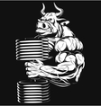 Strong bull vector image vector image