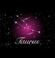 taurus zodiac constellations sign vector image vector image