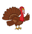 turkey isolated on the white background vector image