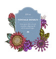 badge design with colored african daisies fuchsia vector image vector image