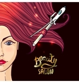 beauty salon vector image