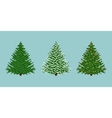 spruces set vector image vector image
