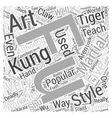 A Look At Kung Fu Word Cloud Concept vector image vector image