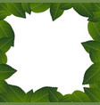 camellia leaves frame border vector image