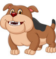 cartoon bulldog isolated on white background vector image vector image