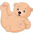 cute cartoon bear vector image